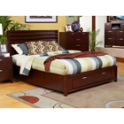 Camarillo Storage Platform Bed