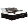 Concord Platform Bed w/ Flat Panel Footboard and Flat Panel Drawers in Espresso