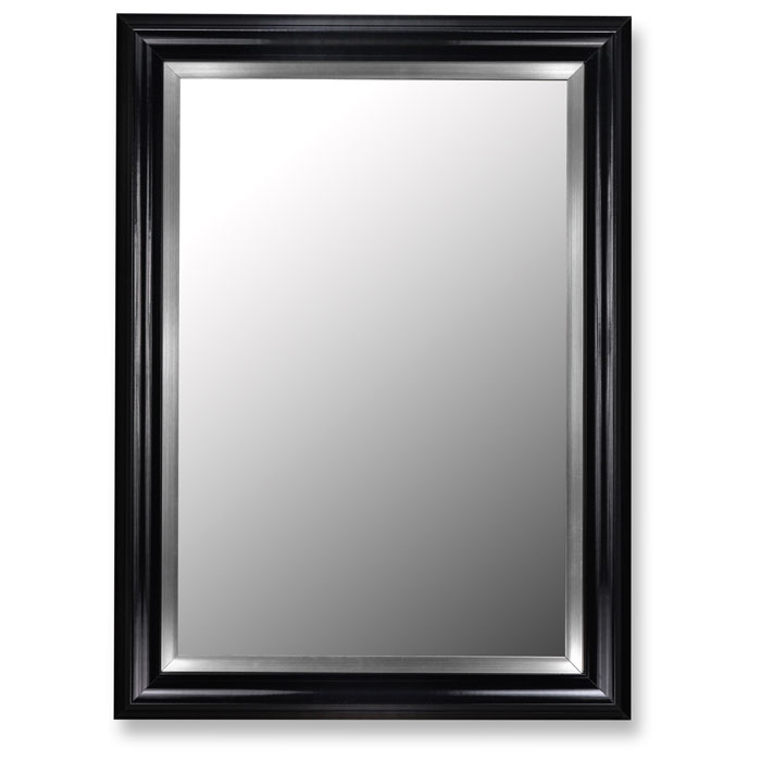 Carleigh Black and Stainless Steel Frame Petite Mirror - Made in USA