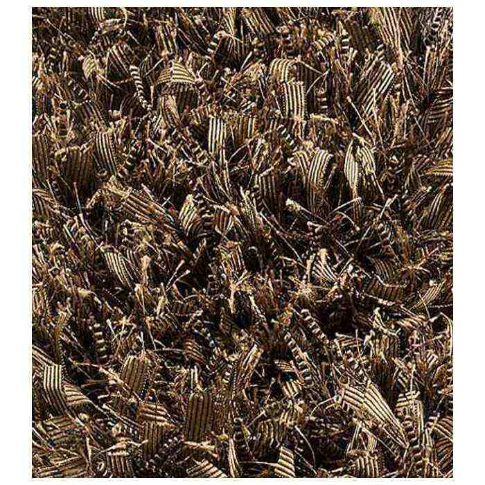 Lucetta Hand Woven Polyester Shaggy Rug in Olive