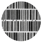 Bar Code - Black & White Rug