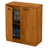 Axess Storage Cabinet - 2 Doors, Country Pine