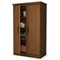 Morgan Storage Cabinet with Adjustable Shelves - SS-7276970