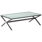 Xert Rectangular Coffee Table - Frosted Glass, Steel Base, Gray