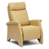 Sequim Modern Recliner Club Chair - Honey Tan
